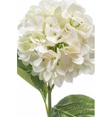 Witte hortensia kunstbloem 67cm