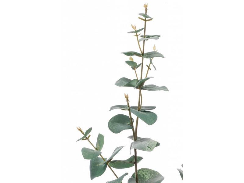 Kunst eucalyptus tak 68cm