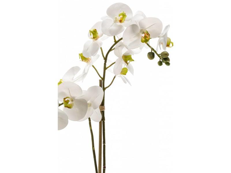 Kunst Phalaenopsis orchidee wit 65cm