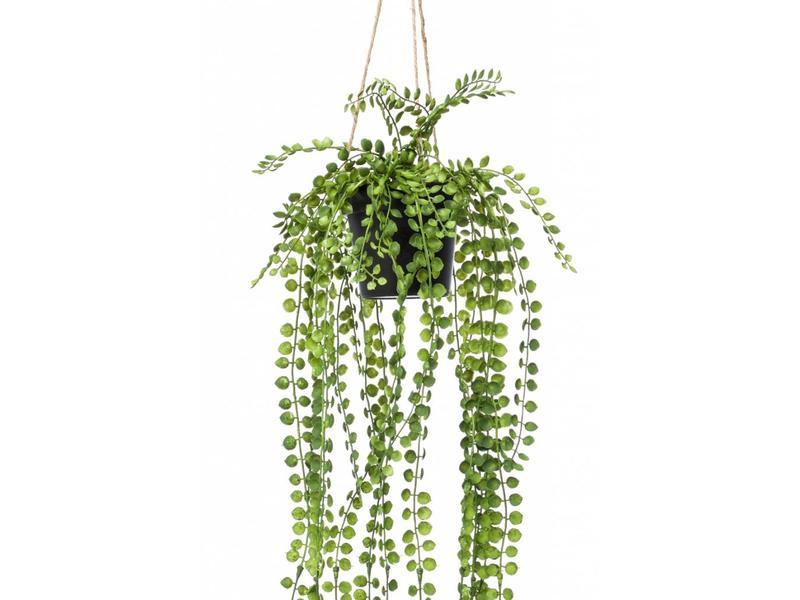 Kunst hangplant Ficus pumila 60cm