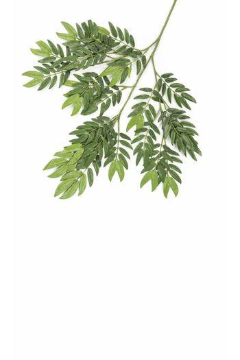 Kunstblad Ming Aralia 50 cm groen brandvertragend