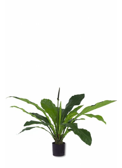 Kunstplant Anthurium 1.03m