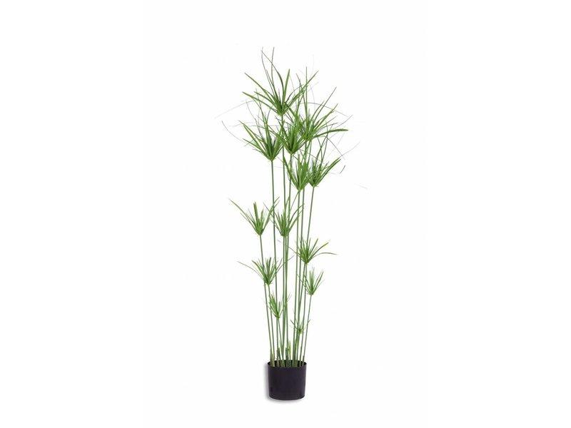 Kunst grasplant Cyperus 140 cm