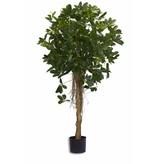 Kunstplant Schefflera klein blad 150 cm
