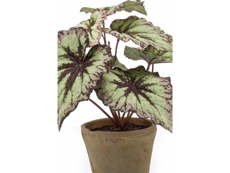 Kunstplant Begonia grijs/paars 25 cm in pot