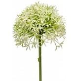 Allium kunstbloem 62 cm crème/groen
