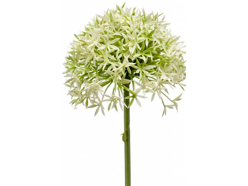 Allium kunstbloem 62cm crème/groen