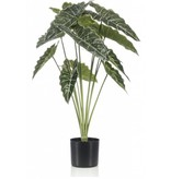 Kunstplant Alocasia 80 cm in pot