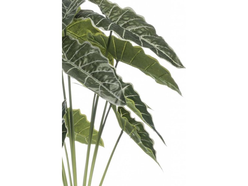 Kunstplant Alocasia 80cm in pot