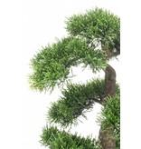 Kunst bonsai Cedar 45cm in pot