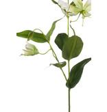 Gloriosa kunstbloem crème wit 75 cm