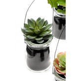 Kunst vetplanten mix 11 cm in hangpotjes