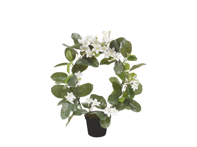 Kunst Stephanotis ring 40cm in pot