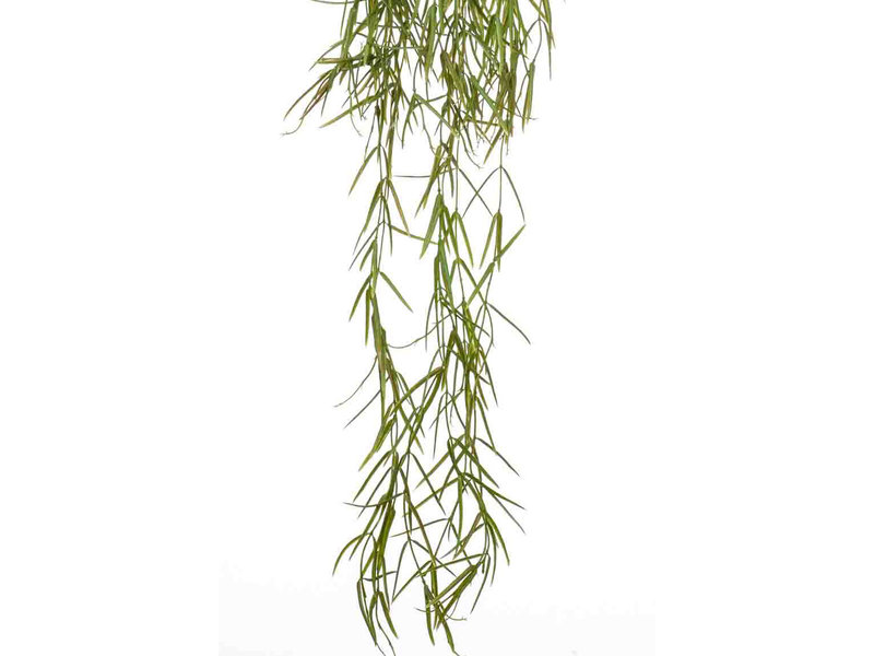 Kunst Hoya hangplant 80 cm in pot