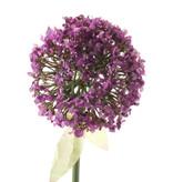 Kunstbloem Allium 70cm paars