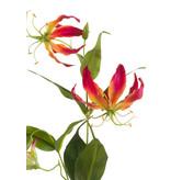 Gloriosa kunstbloem 75cm rood/geel