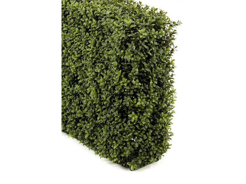 Kunst Buxushaag 70x20x50cm