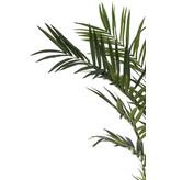 Kunstpalm Kentia 2.70 cm