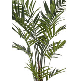 Kunstpalm Kentia 2.70cm