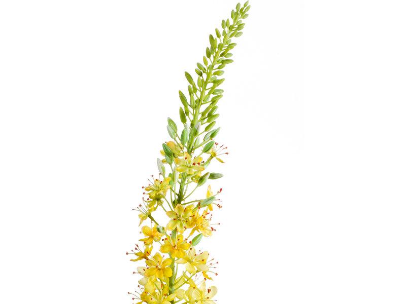 Kunstbloem Eremurus 105cm geel