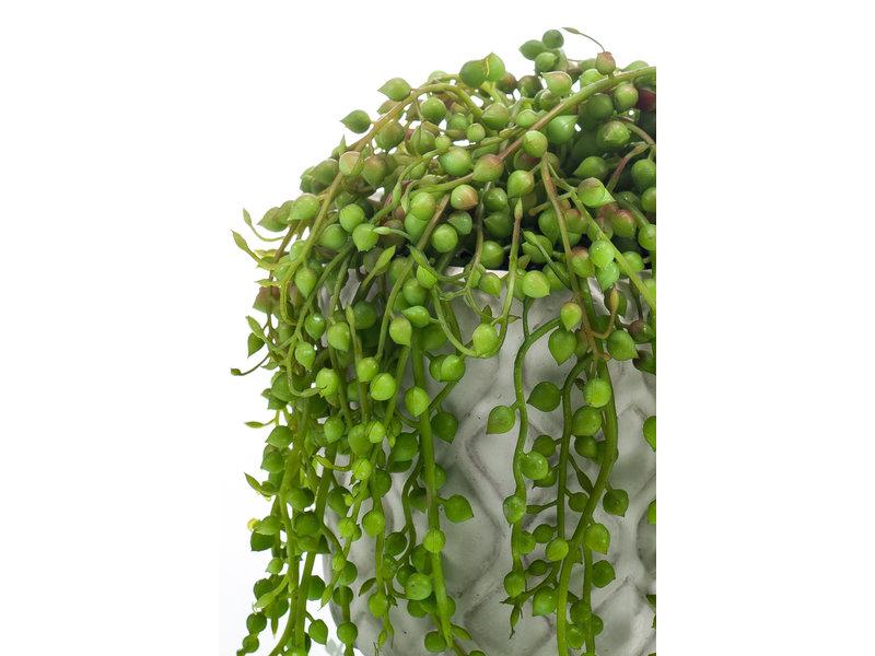 Kunstplant Senecio in cementte pot 15cm