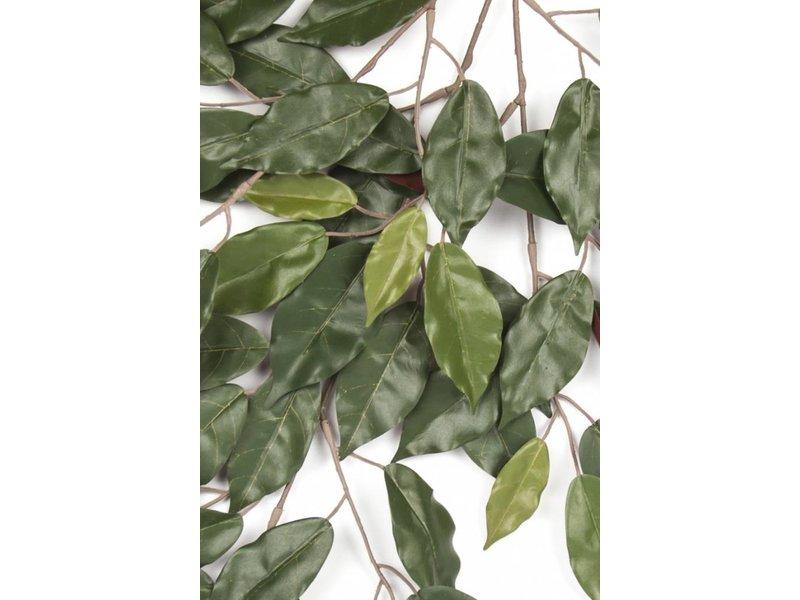 Kunsttak Ficus 40cm