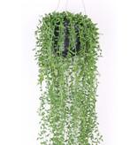 Kunst hangplant senecio 70cm in pot