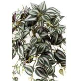Kunst hangplant Tradescantia 70cm