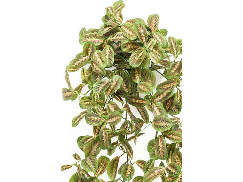 Kunst hangplant Maranta 70cm