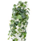 Kunst hangplant Scindapsus 90 cm