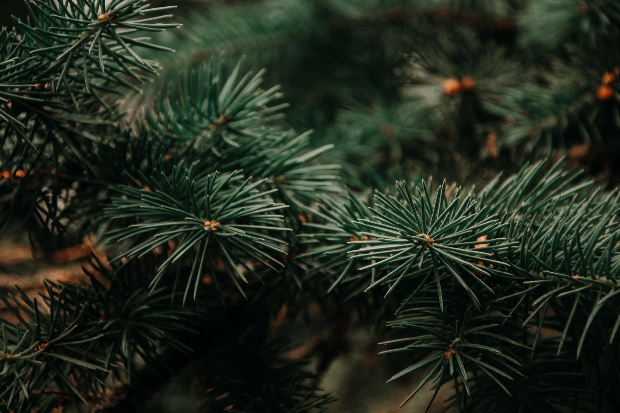 Kunstkerstboom, ideaal voor elke kerst