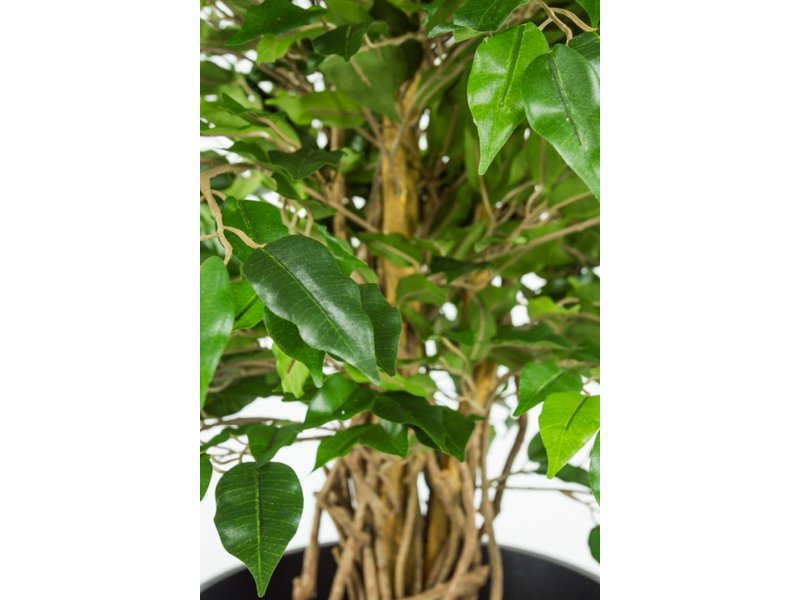Kunstplant Ficus Liana 0.90m