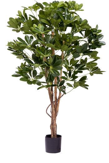 Kunstplant  Schefflera 120cm.