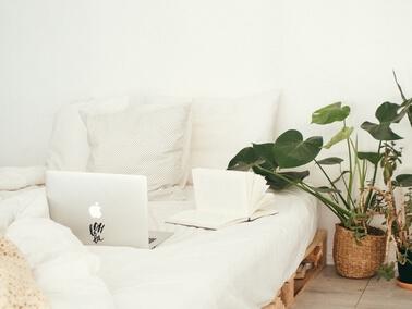 Makkelijke kamerplant gezocht? Maak kennis met de planten van EasyPlants!