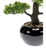 Kunstplant mini Bonsai 47 cm in pot