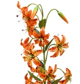 Kunstbloem Lelie oranje 80 cm