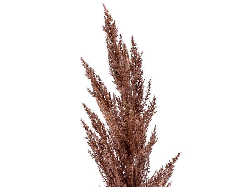 Kunst Pampas gras bruin 115 cm