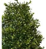 Kunstplant Buxus toren 120 cm UV