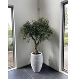 Kunst Olijfboom UV voor buiten 160 cm