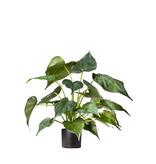 Kunstplant Alocasia 51 cm