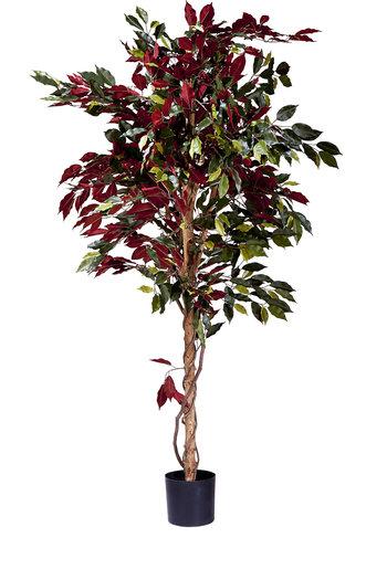 Kunstplant Ficus groen/rood 180 cm brandvertragend