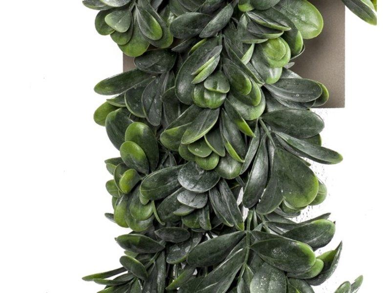 Kunst hangplant Crassula 80 cm