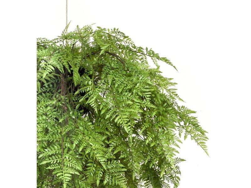 Kunst varen hangplant met wortels d80 cm