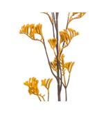 Kunstbloem Kangoeroepoot geel 95 cm