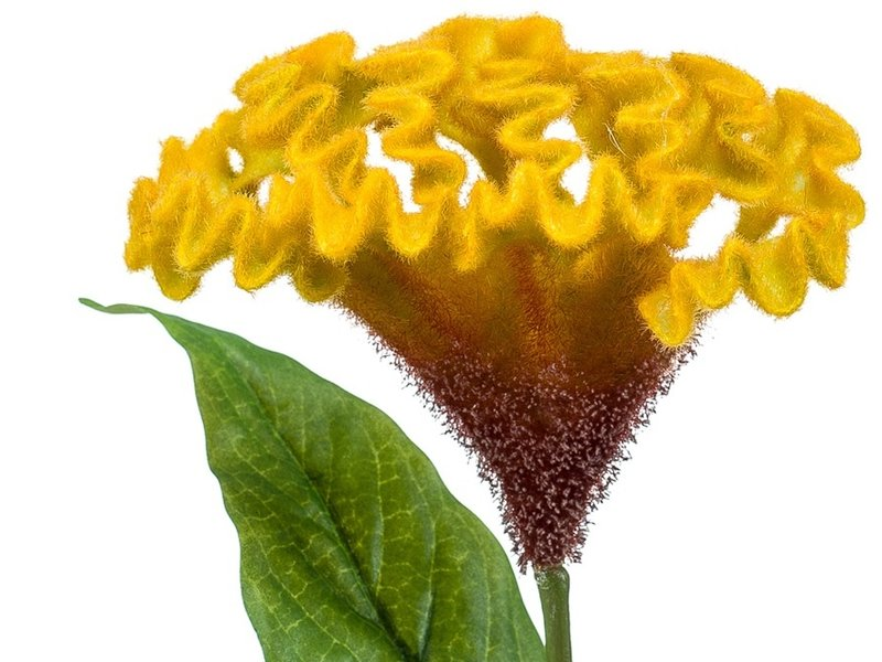 Kunstbloem Hanenkam geel 62 cm