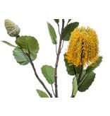 Kunstbloem Banksia geel 72 cm