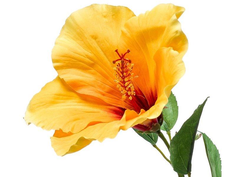 Kunstbloem Hibiscus geel 62 cm