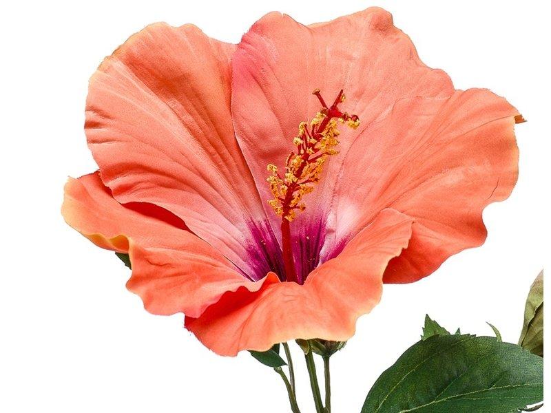 Kunstbloem Hibiscus oranje 62 cm