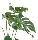 Kunstplant Monstera 40 cm in glas