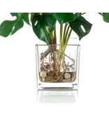 Kunstplant Monstera 45 cm in glas